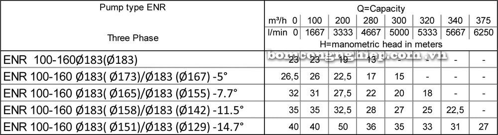 Lưu lượng cột áp Máy bơm công nghiệp Ebara ENR 100 160