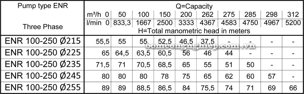 Lưu lượng cột áp của Máy bơm công nghiệp Ebara ENR 100 250