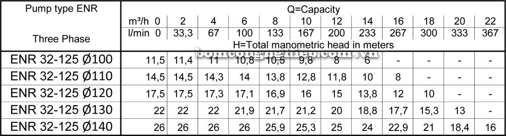 Lưu lượng cột áp Máy bơm công nghiệp Ebara ENR 32 125