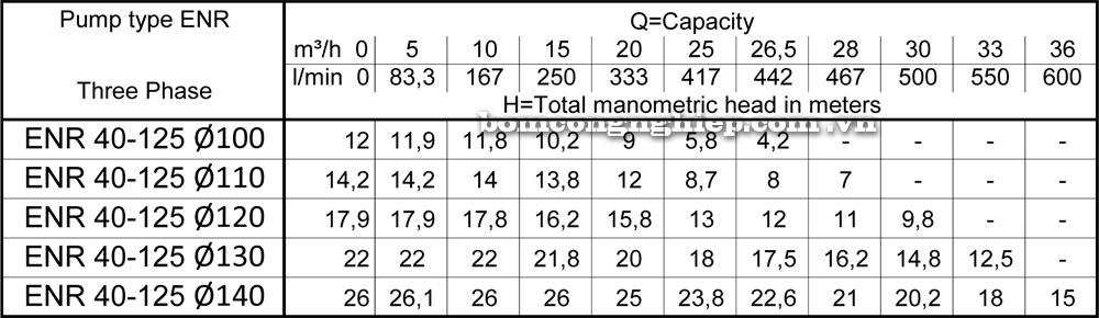 Lưu lượng cột áp Máy bơm công nghiệp Ebara ENR 40 125