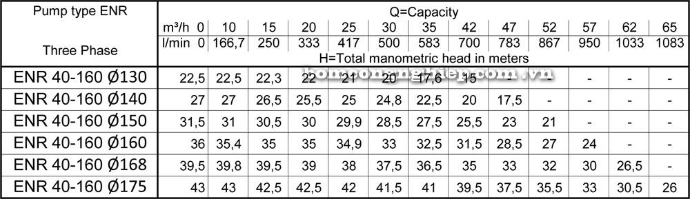 Lưu lượng cột áp Máy bơm công nghiệp Ebara ENR 40 160