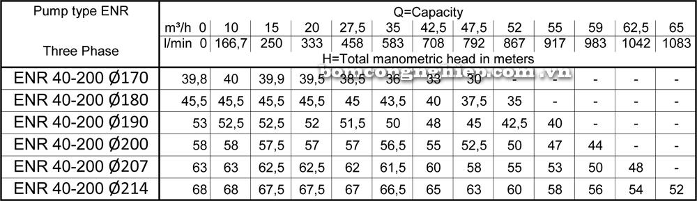Lưu lượng cột áp Máy bơm công nghiệp Ebara ENR 40 200