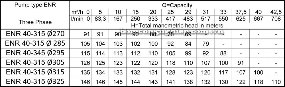 Lưu lượng cột áp Máy bơm công nghiệp Ebara ENR 40 315