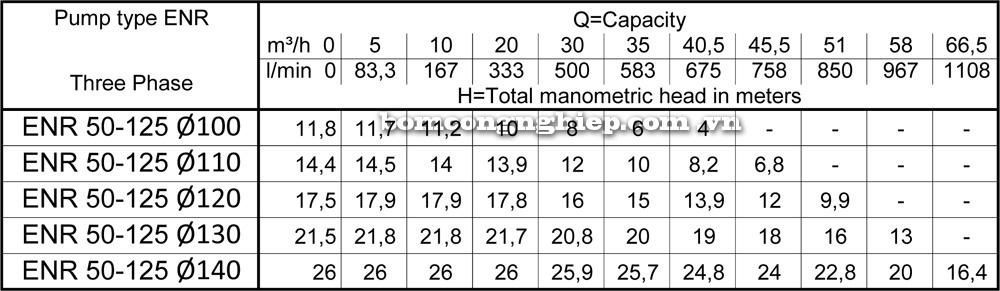 Lưu lượng cột áp Máy bơm công nghiệp Ebara ENR 50 125