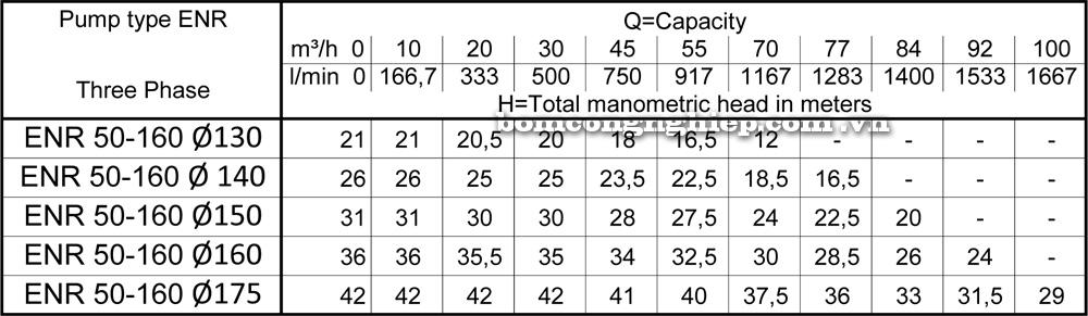 Lưu lượng cột áp Máy bơm công nghiệp Ebara ENR 50 160