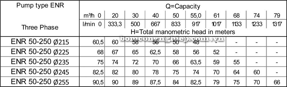 Lưu lượng cột áp Máy bơm công nghiệp Ebara ENR 50 250