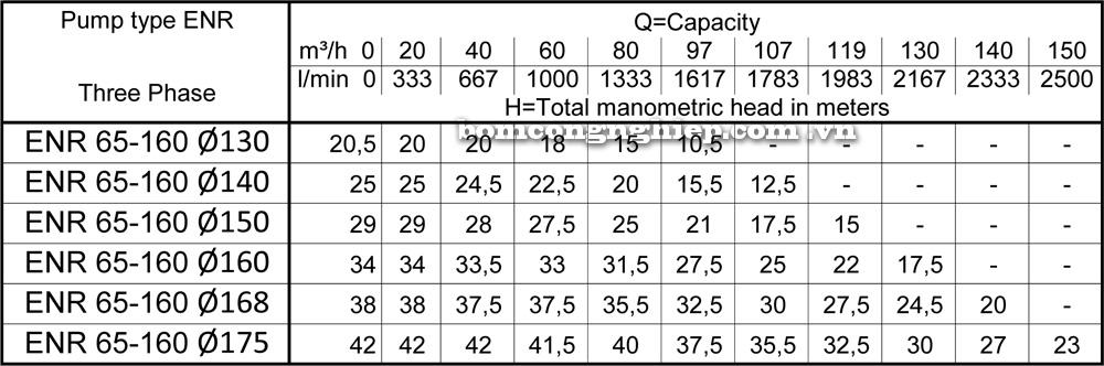 Lưu lượng cột áp Máy bơm công nghiệp Ebara ENR 65 160