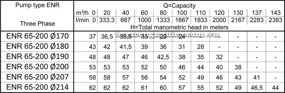 Lưu lượng cột áp Máy bơm công nghiệp Ebara ENR 65 200