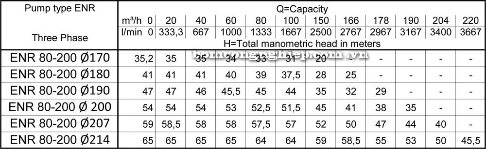 Lưu lượng cột áp Máy bơm công nghiệp Ebara ENR 80 200