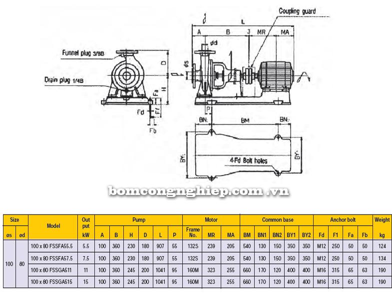 Máy bơm công nghiệp Ebara FSSA 100 x 80 bảng thông số kích thước