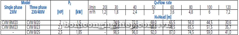 Máy bơm nước trục đứng Ebara CVM B20-25 bảng thông số kỹ thuật